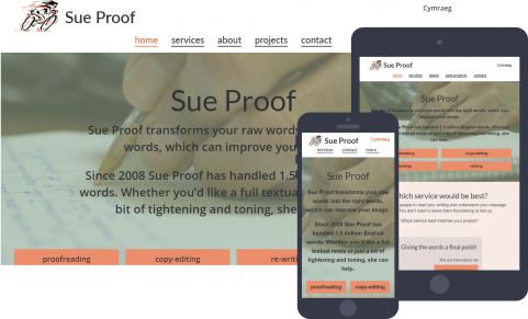 Sue Proof website